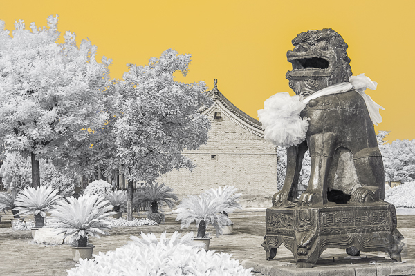 A giant metal chinese lion resists time in a centuries old court yard